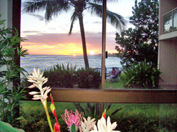 Kuhio Shores #118 - Picture 4
