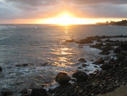 Kuhio Shores #313 - Picture 4